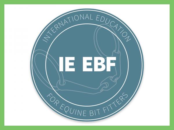 Website IEEBF